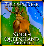 Trophy Deer Hunt Australia