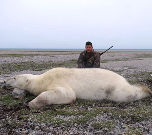 Polar Bear Hunts