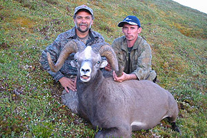 Snow sheep and Moose hunt image