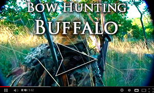 Buffalo Bow Hunt Video